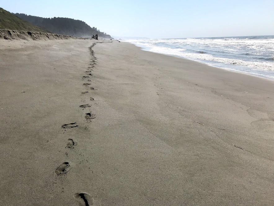 Ocean Walk 1