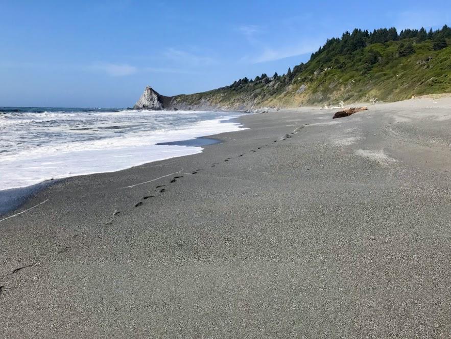 Ocean Walk 4